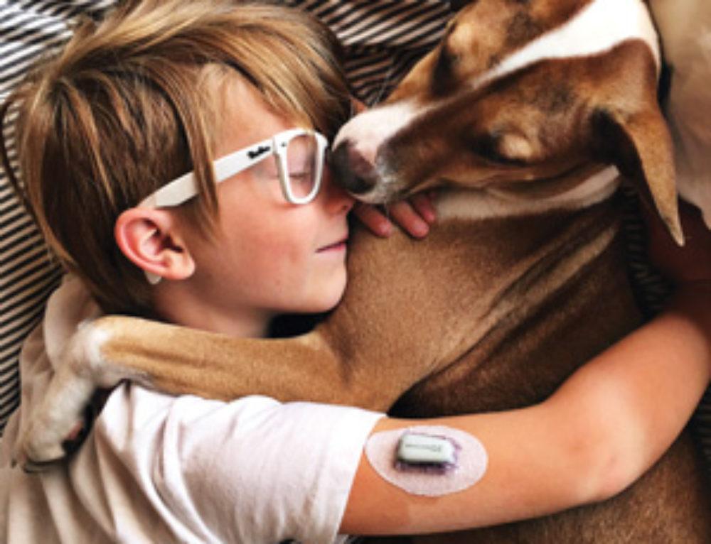 Tako The DAD – Diabetic Alert Dog