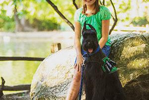 Diabetic Alert Dog Breeds