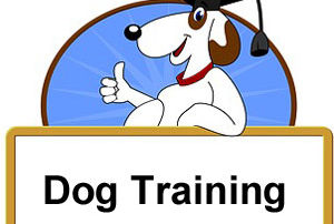Dog Training Texas
