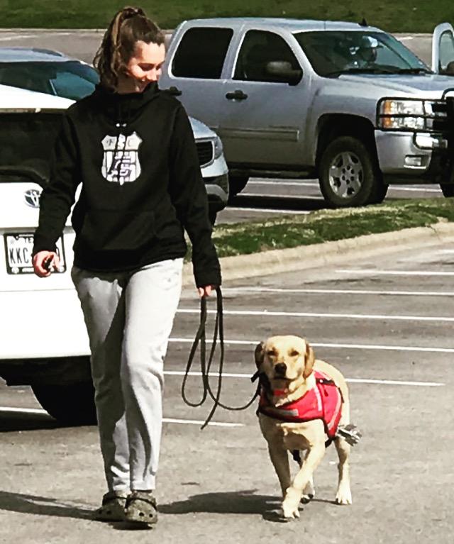 PTSD dog training.